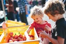 Otago Farmer's Market-114.jpg