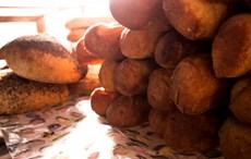 Sunkissed fresh baking.jpg