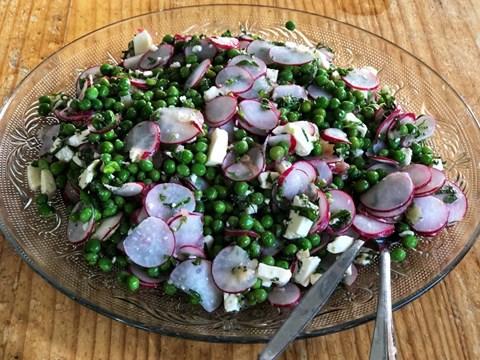 Radish Pea and Curd Cheese Salad.jpg