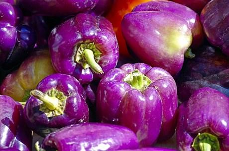 farm-fresh-bell-peppers-3896465_960_720.jpg