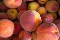 peaches public domain.jpg