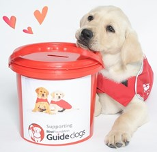 Red Puppy Appeal 2019.jpg