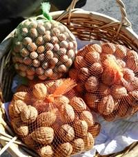 hazelnuts and walnuts.jpg