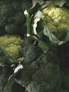 alverada broccoli.jpg (1)