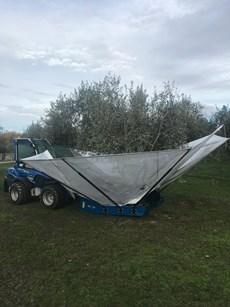 dunford grove olive harvester.jpg