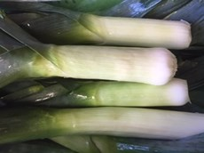 Leeks July 2019.jpg