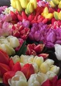 Ettricks Flowers.jpg