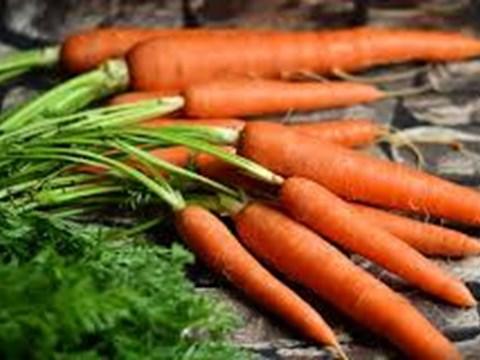 carrots pixabay.jpg