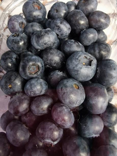 blue willow blueberries.jpg