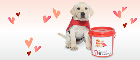Red Puppy Appeal 2020 photo.png