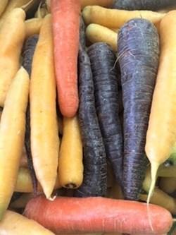 ettricks carrots .JPG
