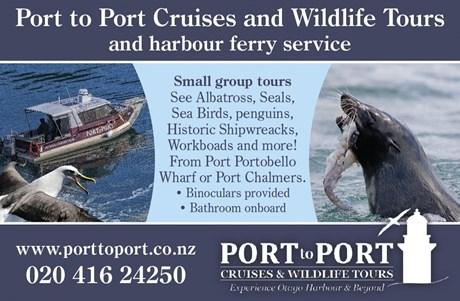 port to port ad.jpg