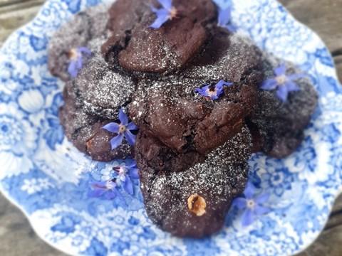 Chocolate Hazelnut Cookies.jpg