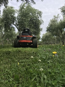 dunford grove.jpg (5)
