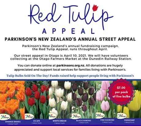 Otago Street Appeal Final1024_1.jpg