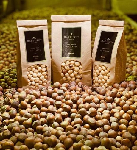 hazelnuts great shot.jpg
