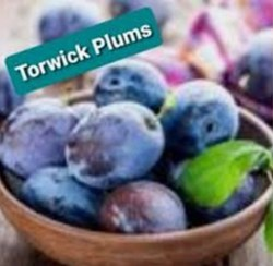 torwick plums earnscleugh.jpg