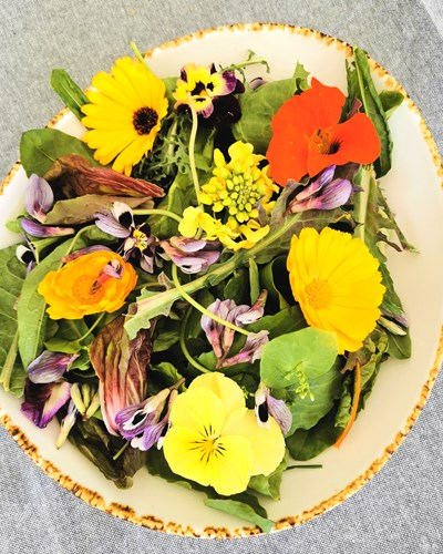 Salad with Edible Flowers and Vinaigrette