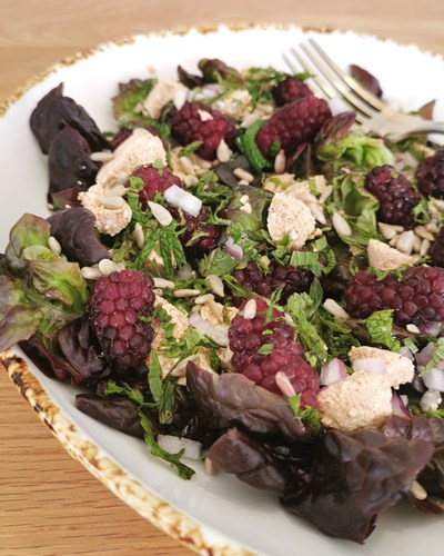 Tayberry, Red Oak and Shinglish Cheese Salad